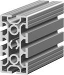 1.11.050100.84S - aluminium Profiel 50x100, 8E S
